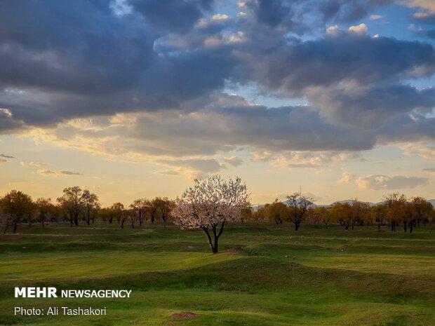 طبیعت بهاری قزوین