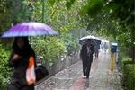 ورود سامانه بارشی به کشور از امروز/ بارش باران در ۱۵ استان