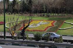 گسترده شدن فرش گل در حاشیه بزرگراههای منطقه سه