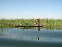 Iran, UNDP sign MOU to revive Hamoun wetland