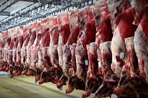برنامه سازمان امور عشایری برای افزایش تولید گوشت قرمز در کشور
