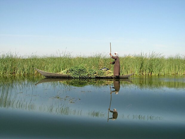 Iran, UNDP sign MOU to revive Hamoun wetland