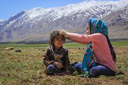 شهر نيسان وبداية موسم غرس البصل / صور