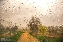 بارندگی و افت محسوس دما/کشاورزان اقدامات پیشگیرانه را انجام دهند