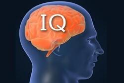 کنفرانس «انواع هوش ۳: علوم شناختی فراتر از انسان» برگزار میشود