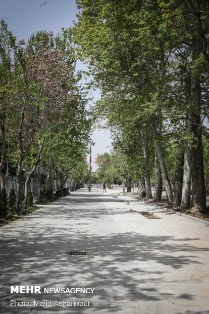 Shahriar St. housing Vahdat Hall paved with cobblestone
