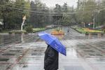 بارندگی ها ادامه دارد/احتمال وزش باد در تهران
