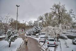 سفید پوش شدن اردبیل در ۱۹ فروردین