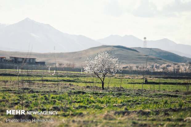 Enchanting springtime landscapes in Hamedan