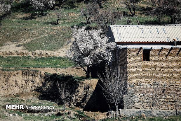 صدای پای بهار در همدان