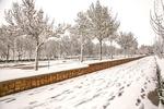 بارش برف بهاری در نقاط مختلف شهری و روستایی استان مرکزی