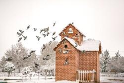 بارش برف بهاری در بجنورد