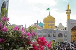 حضرت امام رضا علیہ السلام کی دور سے زیارت