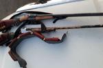۳۵ قبضه سلاح شکاری غیرمجاز در بندرترکمن کشف شد