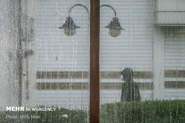 فروردین پر باران تبریز