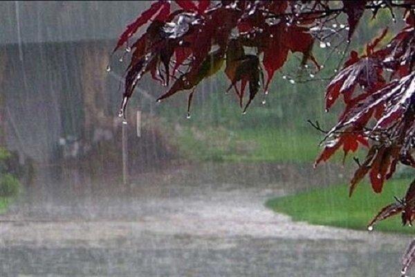 بارش ۱۵۱ میلیمتر باران در شهرضا در سال زراعی جاری