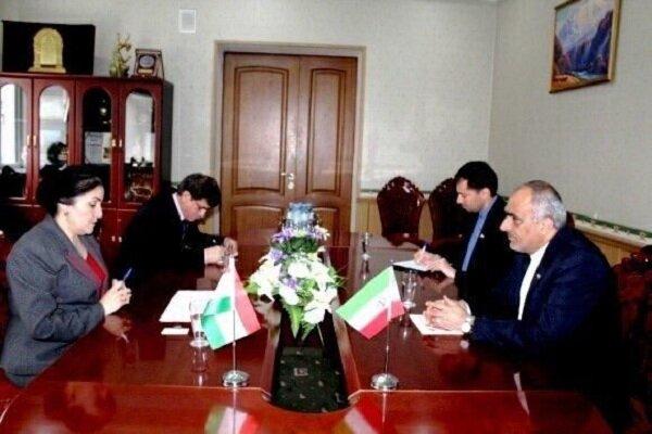 Iran, Tajikistan review cultural coop.