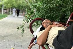 ساماندهی ۱۵ هزار فرد بی خانمان در مددسرای مهر منطقه ۱۹