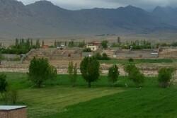 کوه فروشی در کوهپایه کرمان/ زمینهای کشاورزی تبدیل به ویلا میشوند