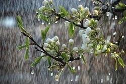 شروع دوباره بارشها در استانهای شمال غربی/کاهش دما در حاشیه خزر