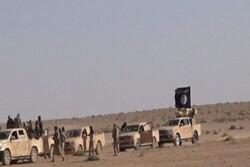 نقشه آمریکا برای انتقال عناصر داعشی از سوریه به الانبار با هدف ایجاد آشوب