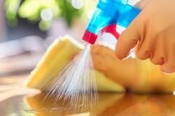 شویندههای گیاهی بر پایه نانو به ۳ کشور صادر می شود