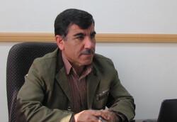 یک هزار تن کالاهای طرح تنظیم بازار در قزوین توزیع شد