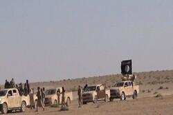 هشدار نسبت به فعالیت های عناصر داعش در شرق شهر «فلوجه»