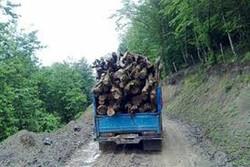 ۳ تن چوب قاچاق در اصفهان کشف شد/ فروردین حریق در مراتع رخ نداد
