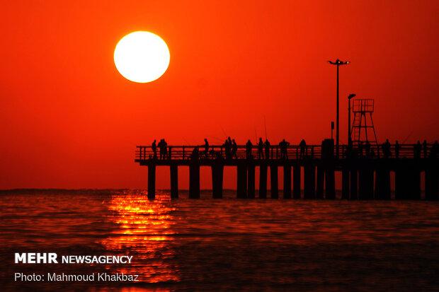 ازالة البقعة النفطية من الخليج الفارسي