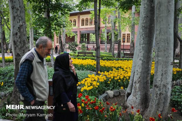 'Iranian Garden' in Northern Tehran