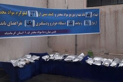 Drug-trafficking gang dismantled in W Iran