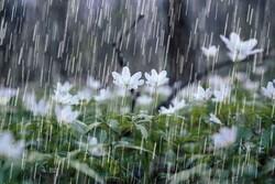 تداوم هوای بارانی در گیلان/ دمای هوا ۴ تا ۸ درجه کاهش می یابد