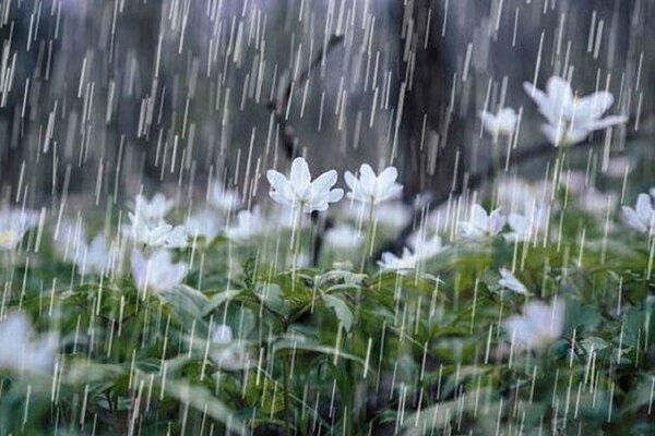 کاهش محسوس دما/ اردبیل هفته پر بارشی در پیش دارد