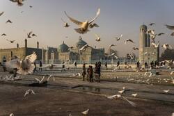 جریان زندگی در افغانستان