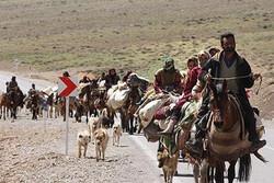 موردمثبت بیمار مبتلا به کرونا در عشایر استان همدان گزارش نشده است
