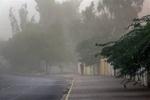 پیش بینی وزش باد شدید در خراسان جنوبی/ احتمال بروز خسارت