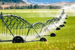 یاوران تولید منجر به توسعه علم در کشاورزی می شود