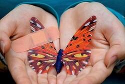 وقتی پروانهای نقاش میشود