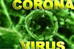 شناسایی ۴۷ بیمار جدید مبتلا به کرونا/ فوت ۲ نفر