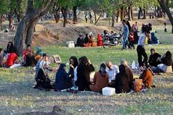 مراسم پنجاه بدر به دلیل ویروس کرونا در قزوین برگزار نمیشود