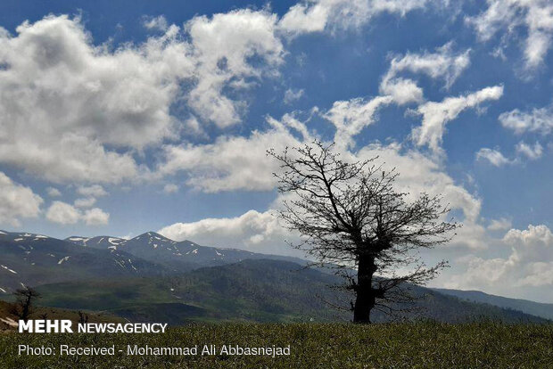 Olang Forest in Iran's Shahroud