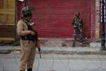 کشمیر میں بھارتی فوج نے فائرنگ کرکے مزید 5 افراد کو ہلاک کردیا