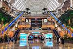 مالها، سوپرمارکتها و هتلها به طور کامل در چین بازگشایی میشوند