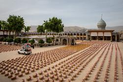 شیراز میں 80 ہزار معاشی اور غذائی پیکیجز کی تقسیم