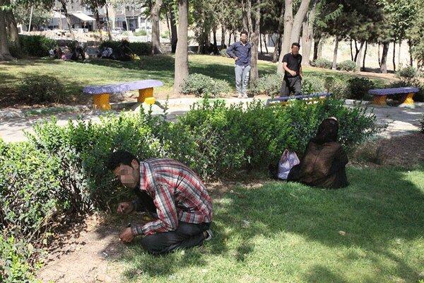 هیچ معتاد متجاهری نباید در سطح شهر بندرعباس مشاهده شود