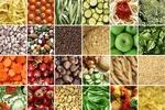 بخش کشاورزی نیازمند توجه ویژه در سال جهش تولید است