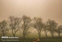 وقوع طوفان کیفیت هوا در خراسان شمالی را کاهش میدهد