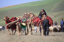 خانہ بدوش قبائل کے کوچ کا آغاز
