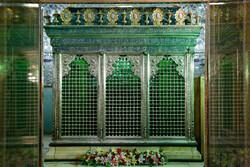 حضرت شاہ عبدالعظیم کے حرم  مطہر کے کھلنے کا انتظار